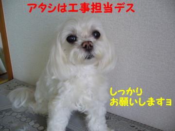 f0005727_16312413.jpg