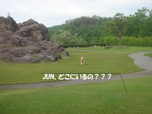 f0114128_1137096.jpg