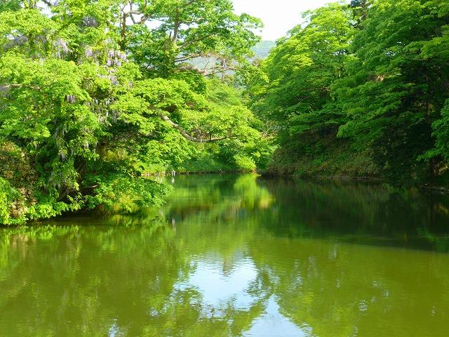 新緑の鶴ヶ城_f0032130_20461420.jpg