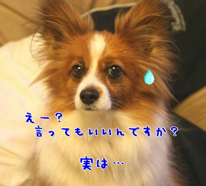 d0013149_12545014.jpg