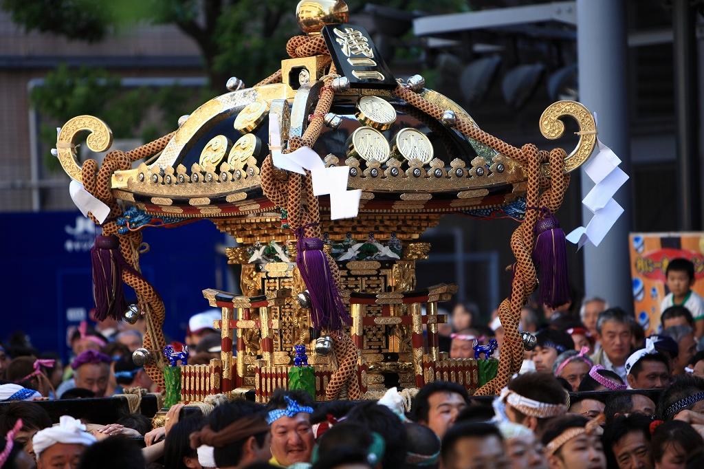 三社祭(予告)_e0001789_1372855.jpg