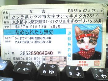 c0053399_10501517.jpg