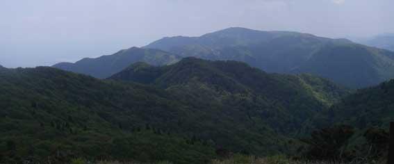 5/22(火) 比良山系ハイキングpartⅡ_a0062810_2182376.jpg