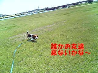 f0121712_9104867.jpg