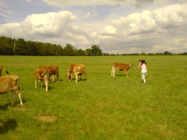 の~んびり♪田園風景♪_d0104926_1952556.jpg