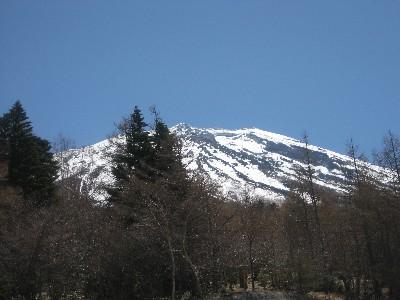 富士山from富士スバルライン三合目あたり_c0060651_1218556.jpg