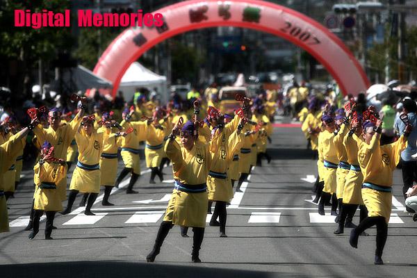 福山ばら祭り2007 シーン2_c0083985_21415724.jpg