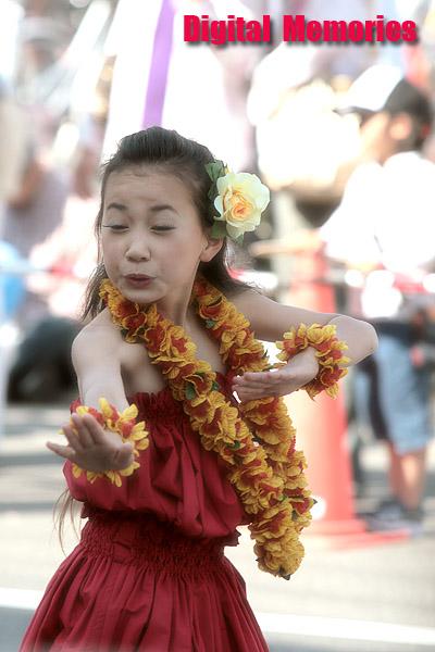 福山ばら祭り2007 シーン2_c0083985_2142733.jpg