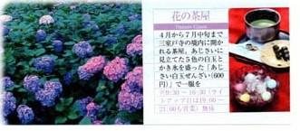 d0020139_155018.jpg
