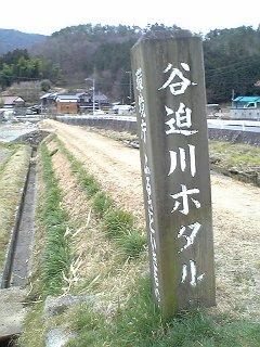 阿戸町谷迫川ホタルとホタルの里_b0095061_8214045.jpg