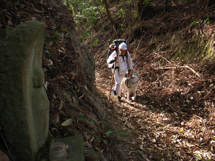 春遍路 第2弾 4月14日 松尾峠をこえて_c0049299_204840100.jpg