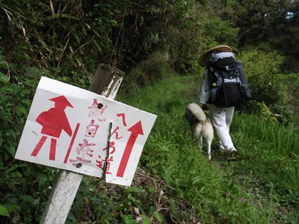 春遍路 第2弾 4月14日 松尾峠をこえて_c0049299_20485720.jpg