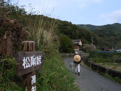 春遍路 第2弾 4月14日 松尾峠をこえて_c0049299_20491458.jpg