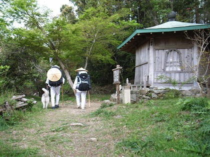 春遍路 第2弾 4月14日 松尾峠をこえて_c0049299_20595156.jpg