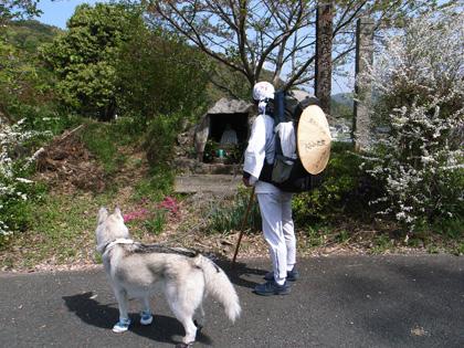 春遍路 第2弾 4月14日 松尾峠をこえて_c0049299_21105222.jpg