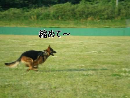 f0133723_19455780.jpg