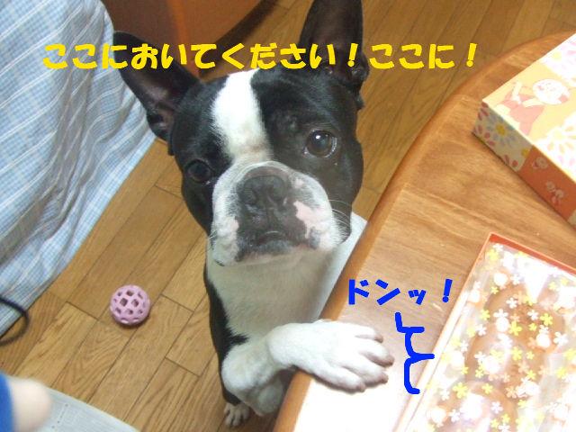 f0059334_9122784.jpg