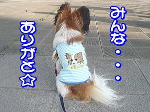 f0011845_0224379.jpg