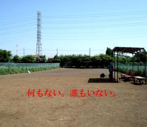 f0132070_7364731.jpg