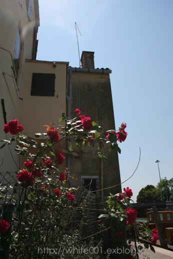 水の都 ベネチア_e0027083_1353535.jpg