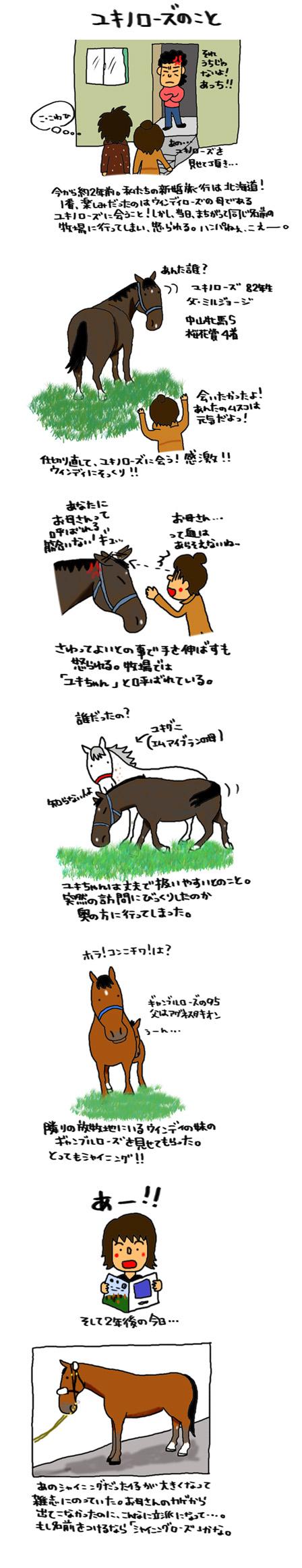 ユキノローズのこと_a0093189_16411035.jpg