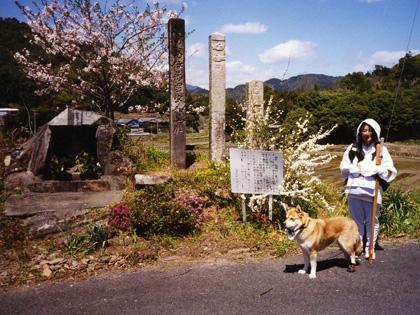 春遍路 第2弾 4月14日 松尾峠をこえて_c0049299_14115428.jpg