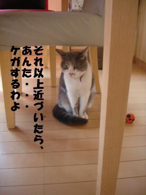 f0110199_2127296.jpg