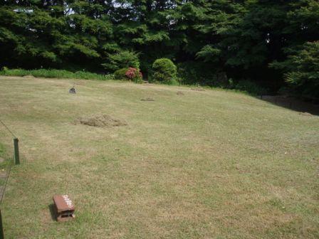 草刈りを行いました。_b0049307_2228108.jpg