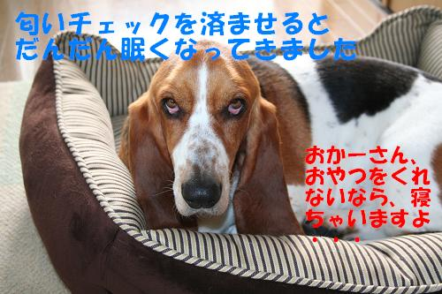 f0121712_12265133.jpg