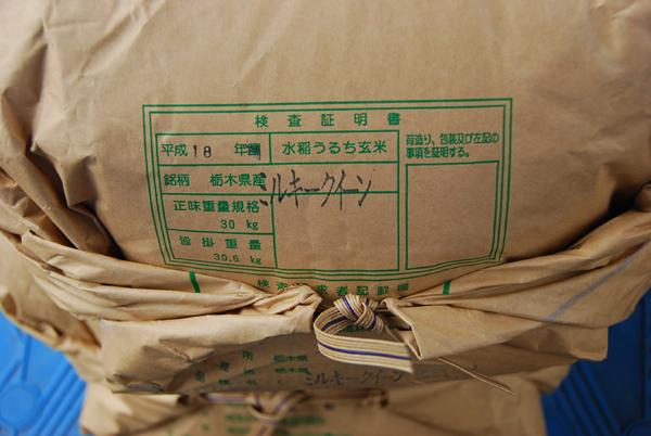 栃木県矢板からやってきたミルキークイーン未検(^_^;)_c0068515_14503962.jpg