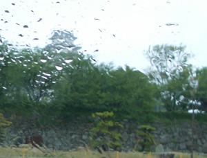 雨の中、姫路を訪問_a0004752_18391647.jpg