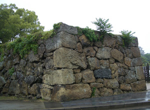 雨の中、姫路を訪問_a0004752_18414996.jpg
