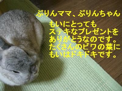 f0104057_0551589.jpg