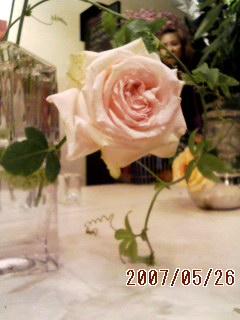 f0121965_23263678.jpg