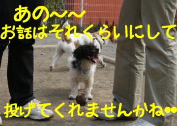 f0055395_1491717.jpg