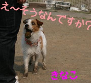 f0055395_152181.jpg