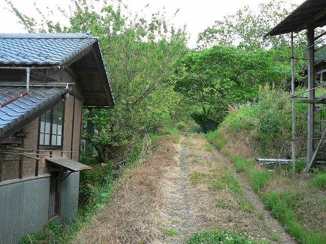 畑までの道のり・・そして・・・空_c0057415_1720912.jpg