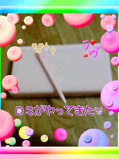 f0081117_046153.jpg