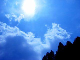 雲蒸竜変_c0118332_1126898.jpg