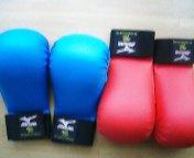 拳サポーター_c0118332_13304486.jpg