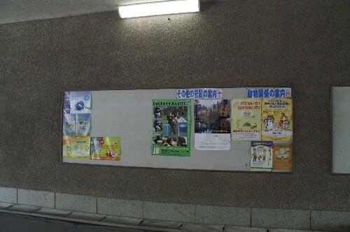 エンリッチメント大賞 2007  _b0024758_0114945.jpg