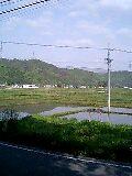 今日の川内村_d0027486_12463655.jpg