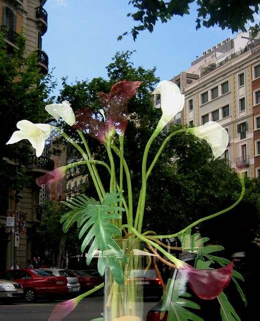 町の花たち_b0064411_17385623.jpg