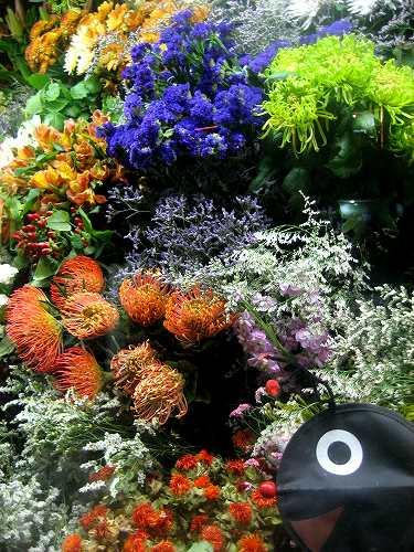町の花たち_b0064411_17433182.jpg