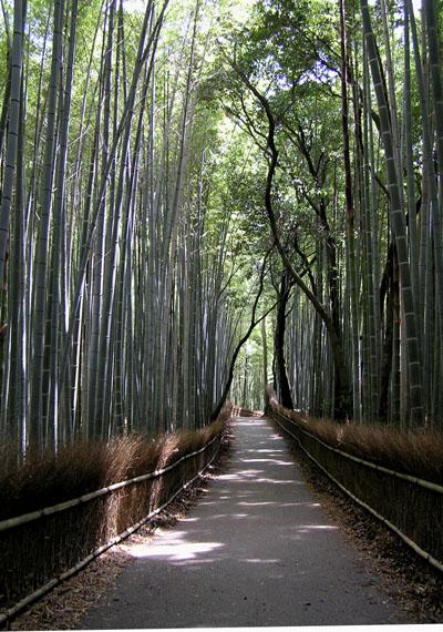 嵯峨野3 竹林の道_e0048413_2141116.jpg