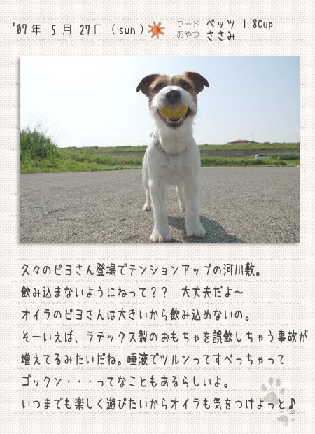 b0040323_9481391.jpg