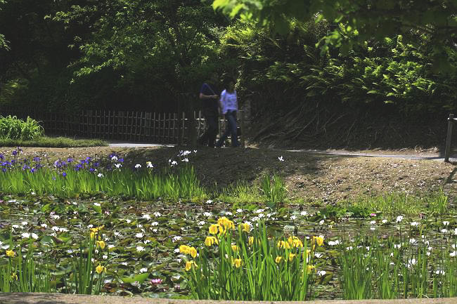 茨城県常陸太田市西山荘_d0106628_20433129.jpg