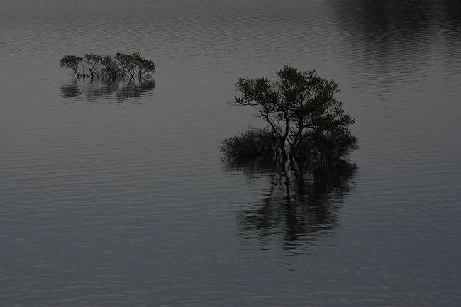 裏磐梯檜原湖_d0106628_2050128.jpg