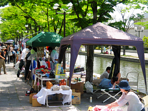 暑くなってくるとタープが大活躍のフリーマーケット。川面を向いてお弁当を食べている人も。川沿いにずーっと植えられた緑の木々が綺麗です。