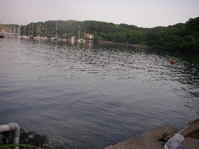27日の三浦市での釣り その二_a0074069_17113964.jpg